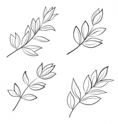 leaves contours vector image