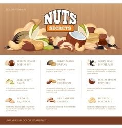 Natural raw nuts mix brochure design template vector