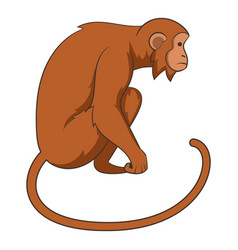 monkey icon cartoon style vector image vector image