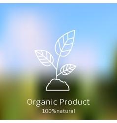 Organic product badge vector image
