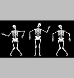 White dancing skeletons vector