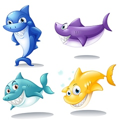 A group of sharks vector image vector image