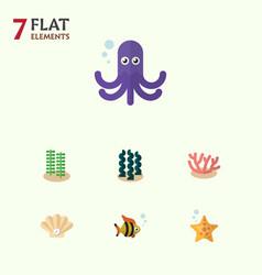 Flat icon marine set of algae seafood seaweed vector