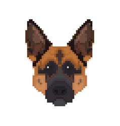 german shepherd head in pixel art style dog vector image
