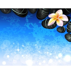Spa background with hot stones and flowers vector