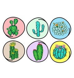 A set of cactus and cactus flowers vector