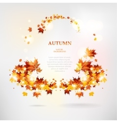 Abstract frame of autumn leaves vector image