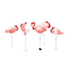Beautiful watercolor flamingos vector