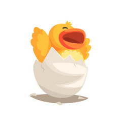 Happy duckling baby hatching from egg vector