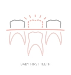 Baby first tooth vector