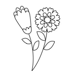 Two flowers decorative spring image vector