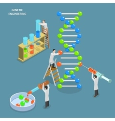 Genetic engineering isometric flat concept vector