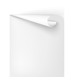 blank pages pages vector image vector image