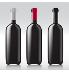 Set realistic glass bottles for wine vector