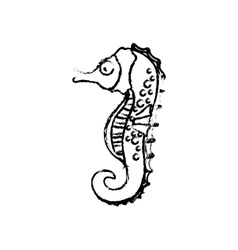 Sea horse cartoon vector