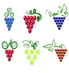 Grapes icons vector