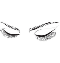 Closed female eyes drawing long eyelashes vector
