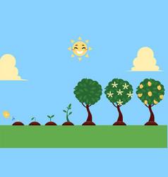 flat tree planting stages symbols set vector image