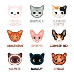 Kawaii cats - Set I vector image vector image