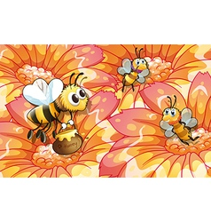 Bees collecting honey vector image