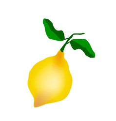 A Fresh Lemon on A White Background vector image