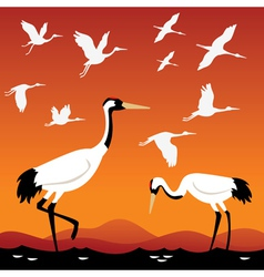 Flying cranes vector