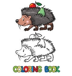 Coloring book of little funny hedgehog vector