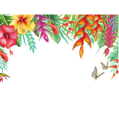 Frame from tropical and flowers vector