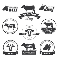 Beef labels vector