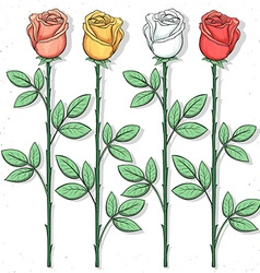Isolated roses handmade in sketch style sketch of vector