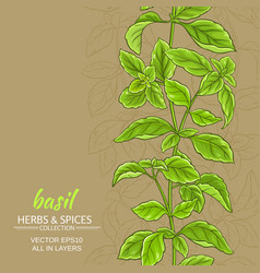 basil background vector image vector image