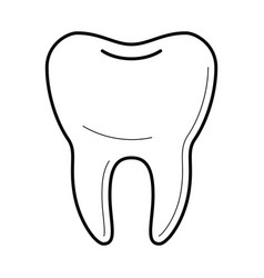 Icons of tooth in thin line style vector
