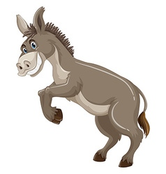 Donkey with gray fur smiling vector