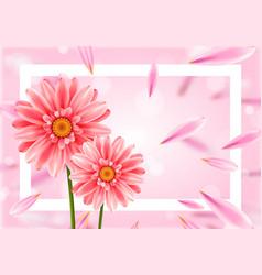gerbera flower on bright pink background vector image