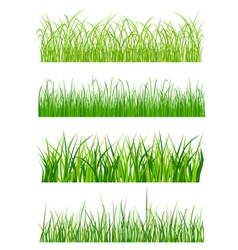 green grass elements vector image vector image