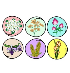 Set of Flower and Orchid vector image vector image