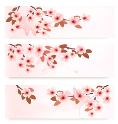 Three spring banners with blossoming branches with vector image