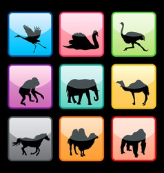wild animals buttons set vector image vector image