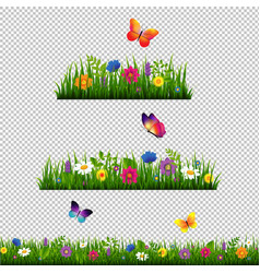 Grass border with flower collection isolated vector