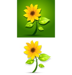 Blooming sunflowers vector