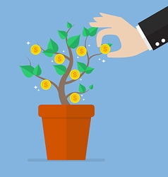 Hand pick a coin from money plant vector