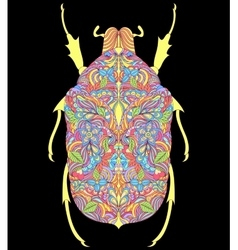 Colorful beetle on black background vector
