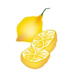 Fresh lemon and half on white background vector