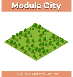 Isometric view projection vector image vector image