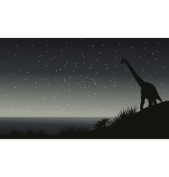 Silhouette of brachiosaurus at night vector image vector image
