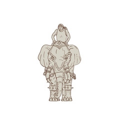 War elephant mahout rider drawing vector