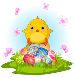 Yellow easter chick vector