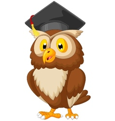 Owl cartoon wearing graduation cap vector