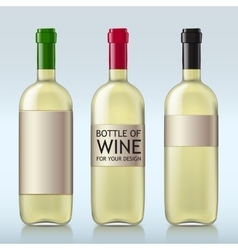 Transparent realistic bottle of wine vector