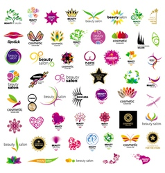 Collection of logos for cosmetics vector image vector image